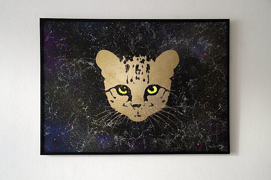 Kočičí Mir